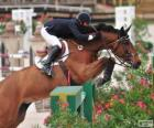 Caballo y su jinete superando un obstáculo en un concurso de saltos
