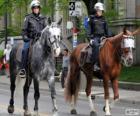 Policías a caballo