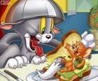 Tom y Jerry en otro de sus conflictos