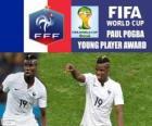 Paul Pogba, Premio jugador joven. Mundial de Fútbol Brasil 2014