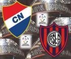 Club Nacional de Paraguay vs San Lorenzo de Almagro de Argentina. Final Copa Libertadores 2014