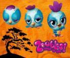 Pajarito Zooble de Petagonia