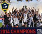 Los Angeles Galaxy, campeón de la MLS 2014