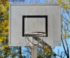 Canasta de básquet