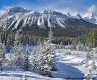 Foto invernal de Crowfoot Mountain, Parque nacional Banff en Alberta, Canadá