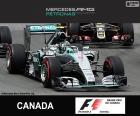 Rosberg G.P. Canadá 2015