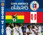 BOL - PER, Copa América 15