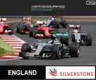Rosberg G.P Gran Bretaña 15
