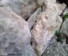 Piedras para el jardín