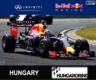 D. Ricciardo G.P Hungría 15