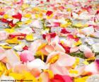 Pétalos de rosa, boda