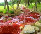 Paisaje con un río rojo