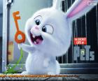 Snowball, un conejo blanco
