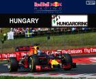 D. Ricciardo, GP Hungría 16