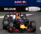D Ricciardo GP Bélgica 2016