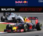 Max Verstappen, segundo en el Gran Premio de Malasia 2016 con su Red Bull, el quinto podio de su carrera en la F1