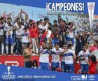 Universidad Católica, campeón 2016