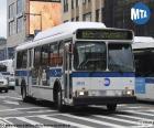Autobús urbano de Nueva York