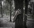 El bosque del horror