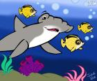Tiburón martillo, Julieta Vitali