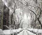 Calle cubierta de nieve