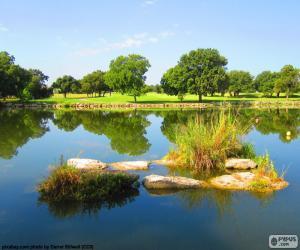 Puzzle de Reflejo en el lago