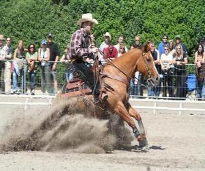 Puzzle de Reining - Monta western - Monta vaquera