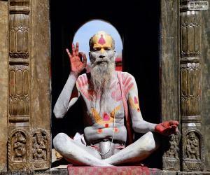 Puzzle de Religión en la India