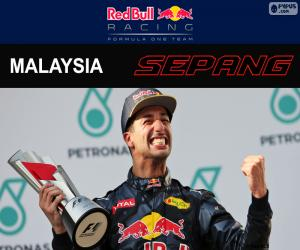 Puzzle de Ricciardo, GP Malasia 2016