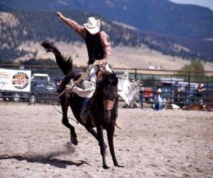 Puzzle de Rodeo - Jinete en la prueba del caballo con montura, montando un caballo salvaje