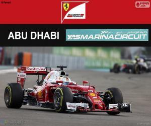 Puzzle de S Vettel, GP Abu Dhabi 2016