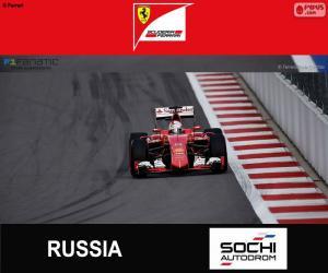 Puzzle de S. Vettel G.P de Rusia 2015