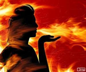 Puzzle de Salamandras, hadas del fuego