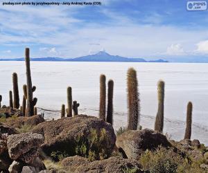 Puzzle de Salar de Uyuni, Bolivia