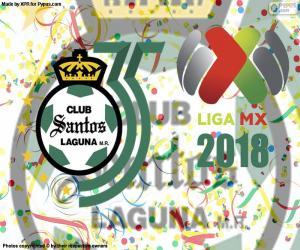 Puzzle de Santos, Clausura 2018