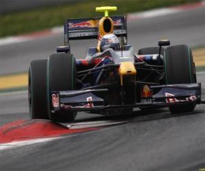 Puzzle de Sebastian Vettel pilotando su F1