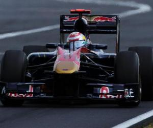Puzzle de Sebastien Buemi - Toro Rosso - Hungaroring 2010