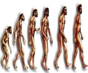 Puzzle de Secuencia de la evolución humana desde el australopithecus Lucy hasta el hombre moderno pasando entre otros por los hombres