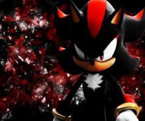 Puzzle de Shadow es un erizo como Sonic, y su rival