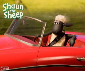 Puzzle de Shaun conduciendo un coche