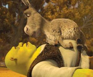 Puzzle de Shrek y Asno, mirandose fijamente