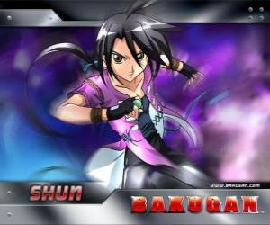 Puzzle de Shun Kamazi, el mejor amigo de Dan es un chico fuerte y solitario