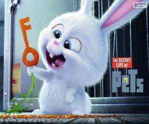 Puzzle de Snowball, un conejo blanco
