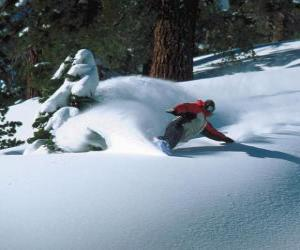 Puzzle de Snowboarder descendiendo en nieve virgen