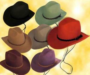 Puzzle de Sombreros de varios colores
