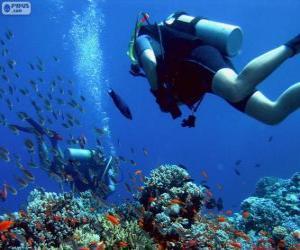 Puzzle de Submarinismo
