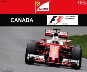Puzzle de S.Vettel, G.P Canadá 2016
