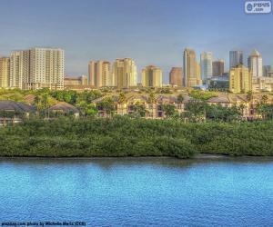 Puzzle de Tampa, Estados Unidos