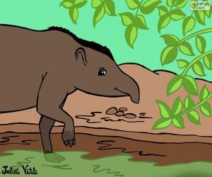Puzzle de Tapir, de Julieta Vitali