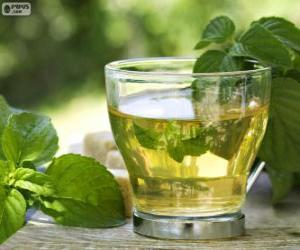 Puzzle de Taza de té verde
